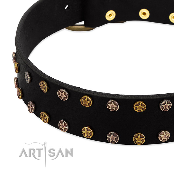 Trendy adornments on full grain natural leather collar for your pet