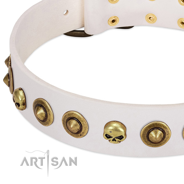 Designer decorations on full grain natural leather collar for your dog