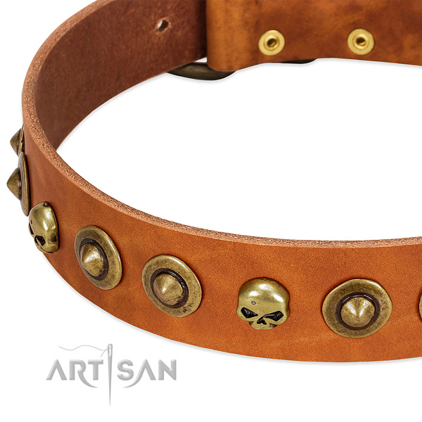 Stunning embellishments on full grain leather collar for your dog