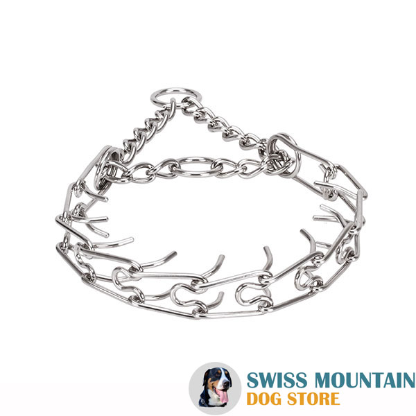 Prong collar of reliable stainless steel for poorly behaved pets